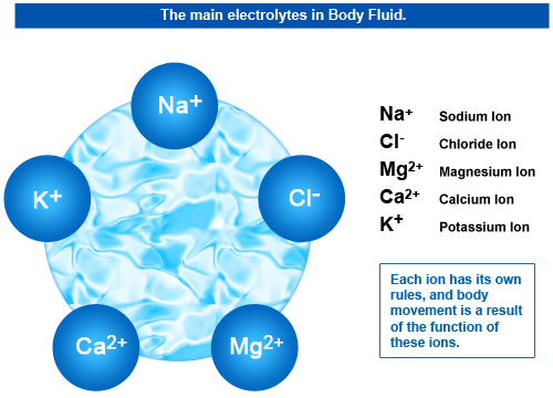 The Purpose Of Electrolytes